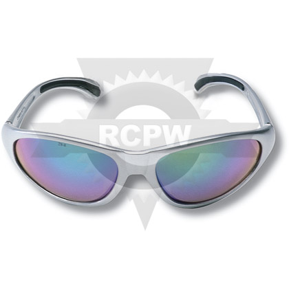 Picture of PRO II SAFETY GLASSES