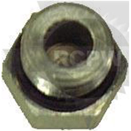Picture of Hex Plug Assembly with Hole