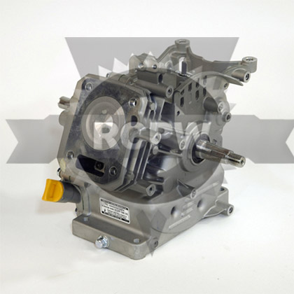 Picture of SHORT BLOCK ASM