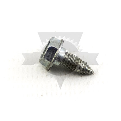 Picture of SCREW RPL 30137