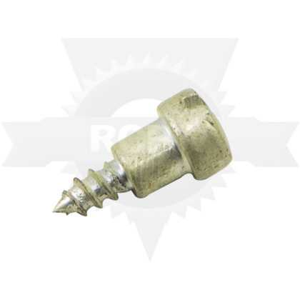 Picture of Governor Screw