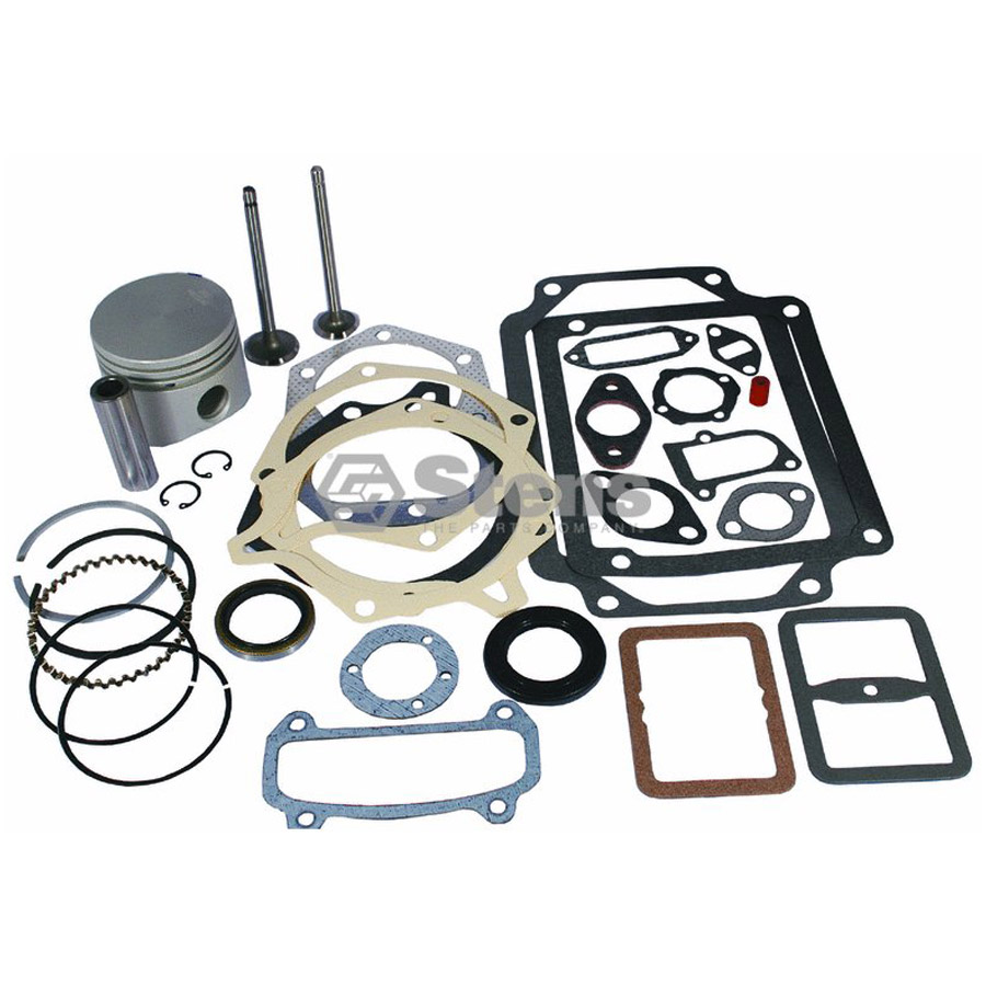 Briggs & Stratton Overhaul Kit ($174.86)
