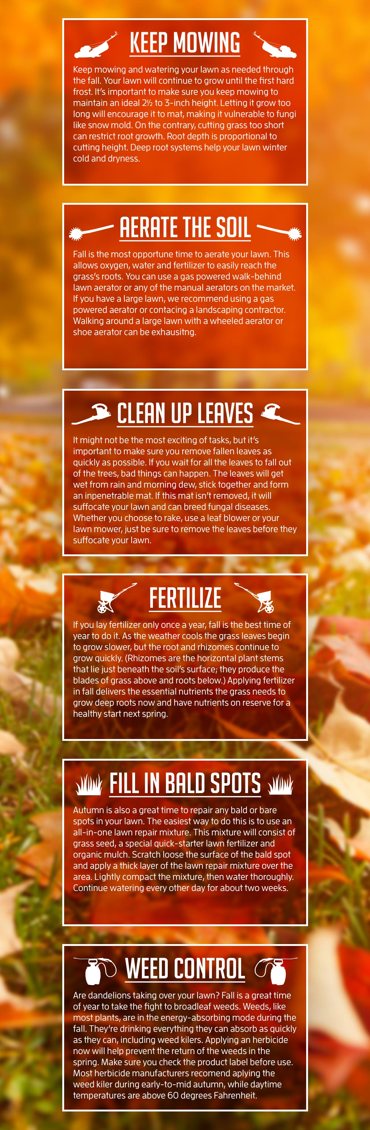 6 Fall Lawn Maintenance Tips You Can Use Now